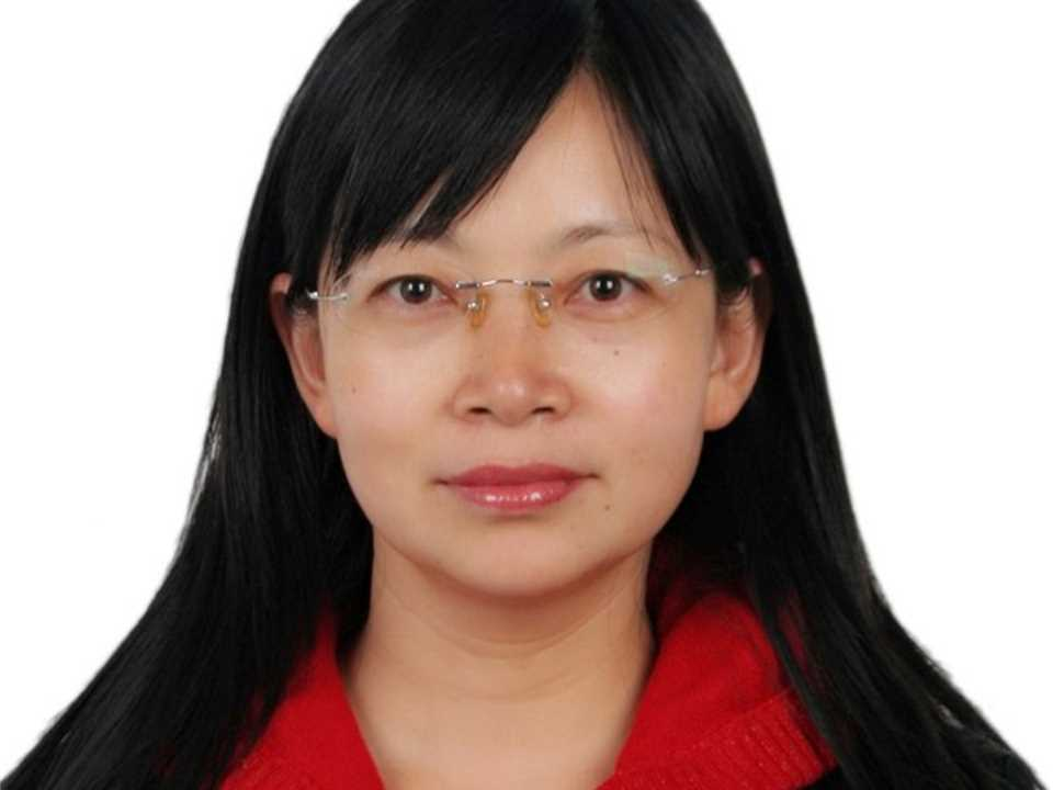 Yamei Zhang, Professor and Associate Dean, School of Materials Science & Engineering, …