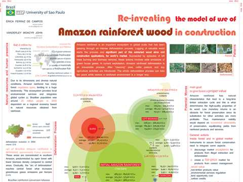 Re-inventing the model of use of Amazon rainforest wood in construction