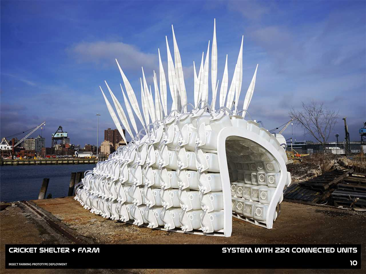 Modular edible insect farm, New York City, USA