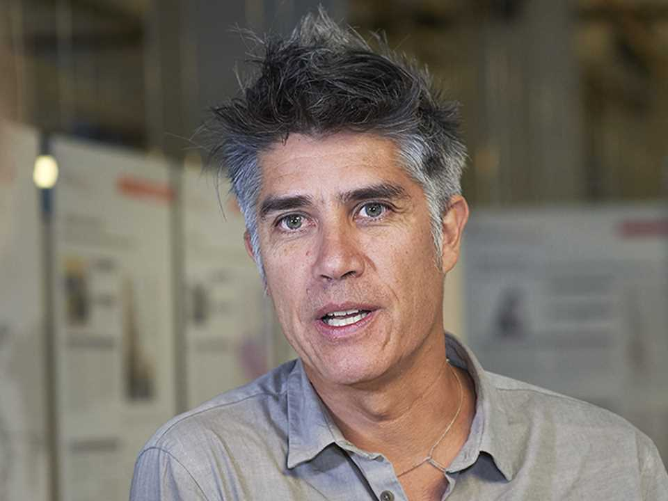 Aravena - Global Gold english.jpg