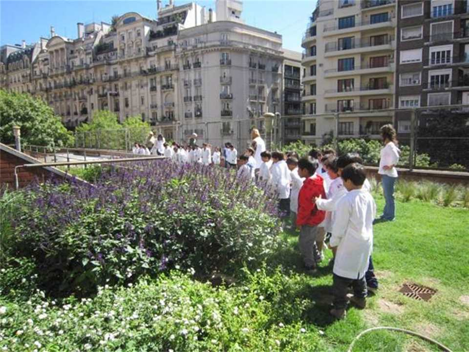 Green roofs for Buenos Aires