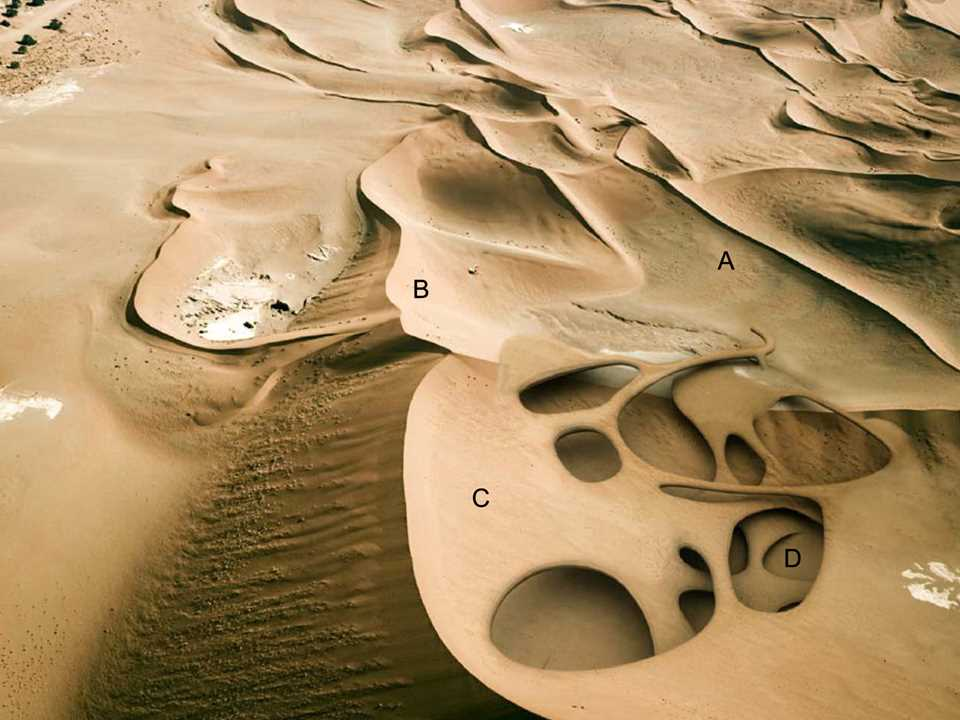 "Holcim Awards ""Next Generation"" 2nd prize 2008 Africa Middle East: Dune anti-desertification …"