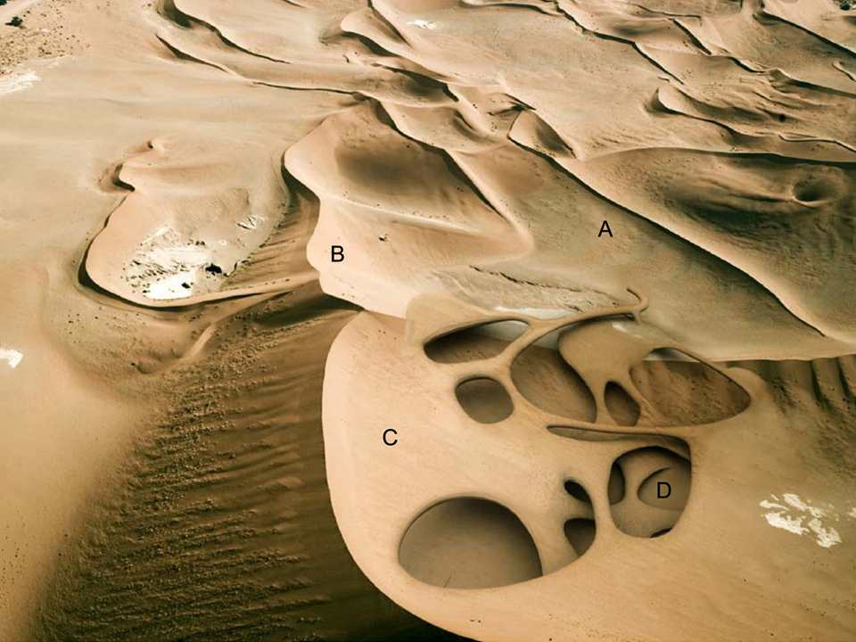 Dune anti-desertification architecture
