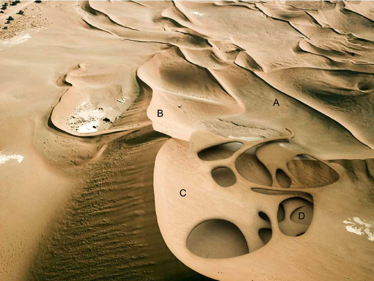 "Holcim Awards ""Next Generation"" 2nd prize 2008 Africa Middle East: Dune …"
