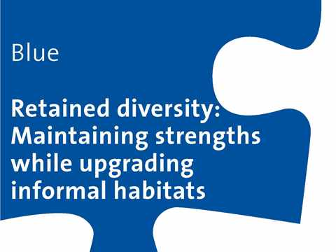 Blue Workshop: Retained diversity – Maintaining strengths while upgrading informal habitats