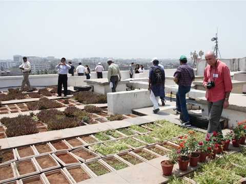 Holcim Forum 2013 workshop – Rooftop gardens at Kohinoor Hospital.