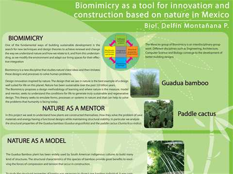 Biomimicry as a tool for innovation and construction based on nature in Mexico