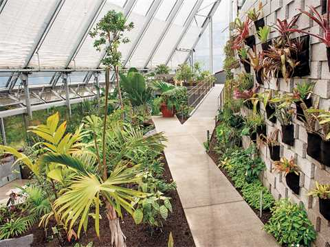 The re-imagined greenhouse is growing on its residents