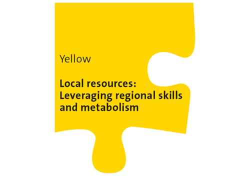 Yellow Workshop: Local resources - Leveraging regional skills and metabolism
